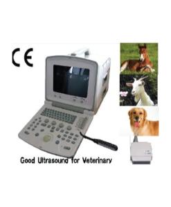 PORTABLE ULTRASOUND SCANNER CMS600B2