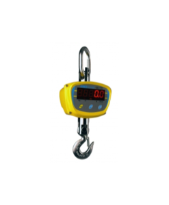 LHS Crane Scales